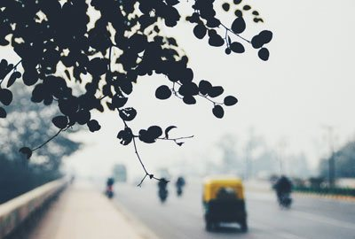 Monsooned Malabar Indien