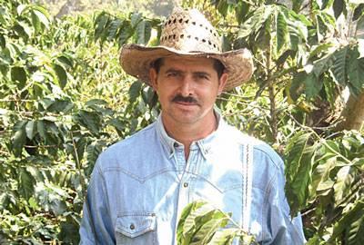 Guatemala rohe Kaffeebohnen