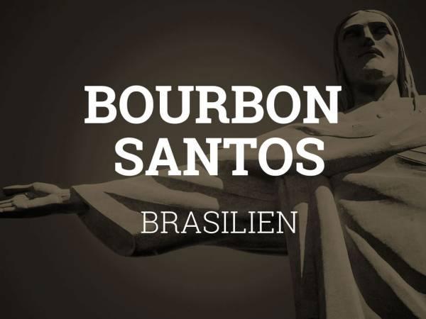 Rohkaffee: Brasilien, Catuai & Bourbon Santos