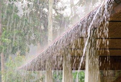 Rohkaffeebohnen Monsooned Malabar