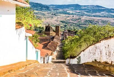 Kolumbien Castillo rohe Kaffeebohnen