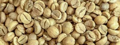 Rohkaffee Bio Robusta